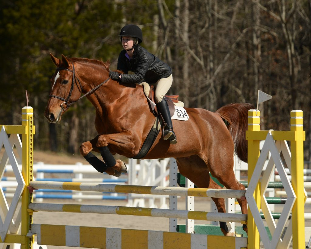 Cailin Schaefer her show jumper Gesha winning the RMI Classic in Chattanooga